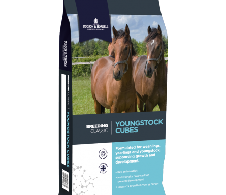 Youngstock Cubes