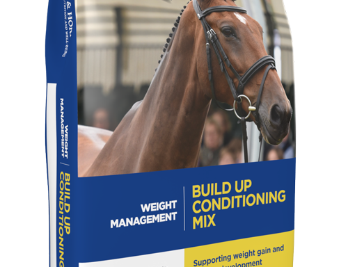 Build Up Conditioning Mix