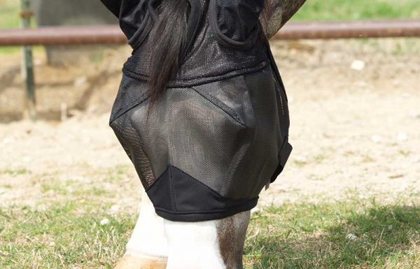 Eco Fly Masks With Ears